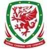 Pays de Galles Enfant 2018